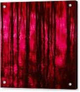 Reflections Acrylic Print by David Lane