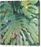 Rendezvous Acrylic Print by Elizabeth Carr