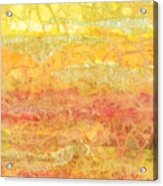 Rhapsody Of Colors 30 Acrylic Print by Elisabeth Witte - Printscapes
