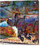 Rhino On The Run Acrylic Print by Marilyn Sholin