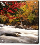 River Rapids Fall Nature Scenery Acrylic Print by Oleksiy Maksymenko