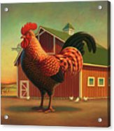 Rooster And The Barn Acrylic Print by Robin Moline