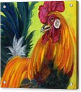 Rooster Kary Acrylic Print by Summer Celeste