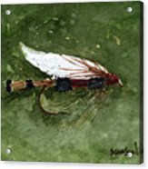 Royal Coachman Wet Fly Acrylic Print by Sean Seal