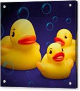 Rubber Duckies Acrylic Print by Tom Mc Nemar