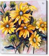 Rudbeckia  Prairie Sun Acrylic Print by Karin  Dawn Kelshall- Best