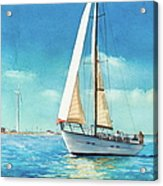 Sailing Through The Gut Acrylic Print by Laura Lee Zanghetti