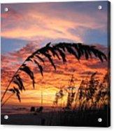 Sanibel Island Sunset Acrylic Print by Nick Flavin