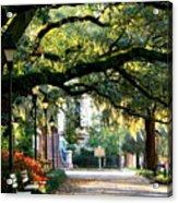 Savannah Park Sidewalk Acrylic Print by Carol Groenen