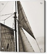 Schooner Pride Tall Ship Yankee Sail Charleston Sc Acrylic Print by Dustin K Ryan
