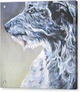 Scottish Deerhound Acrylic Print by Lee Ann Shepard