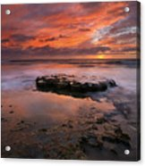 Sea Of Red Acrylic Print by Mike  Dawson