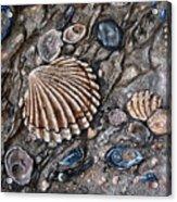 Sea Shore Acrylic Print by Avril Brand