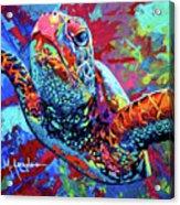 Sea Turtle Acrylic Print by Maria Arango