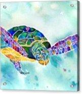 Sea Weed Sea Turtle  Acrylic Print by Jo Lynch