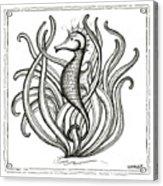 Seahorse Acrylic Print by Stephanie Troxell
