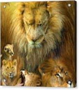 Seasons Of The Lion Acrylic Print by Carol Cavalaris