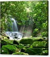 Secret Paradise - Hidden Appalachian Waterfall Acrylic Print by Matt Tilghman