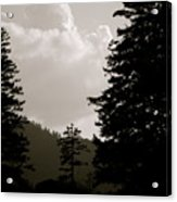 See The Mountain Through The Trees Acrylic Print by Kimberly Camacho