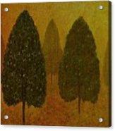 September Trees  Acrylic Print by David Dehner