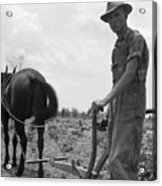 Sharecroppers Son, 1937 Acrylic Print by Granger