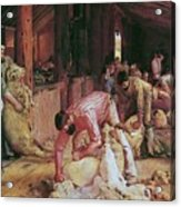 Shearing The Rams Acrylic Print by Pg Reproductions