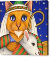 Shepherd Cat Acrylic Print by Carol Wilson