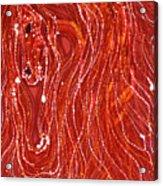 Shimmer Acrylic Print by Carol  Law Conklin