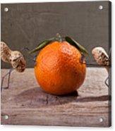 Simple Things - Antagonism Acrylic Print by Nailia Schwarz