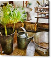 Sink - Eat Your Greens Acrylic Print by Mike Savad