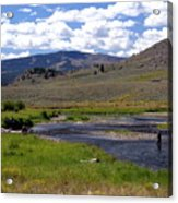 Slough Creek Angler Acrylic Print by Marty Koch