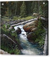Small Stream In The Lost Wilderness 070810-1612 Acrylic Print by Kenneth Shanika