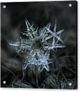 Snowflake Of 19 March 2013 Acrylic Print by Alexey Kljatov