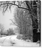 Snowy Branch Over Country Road - Black And White Acrylic Print by Carol Groenen