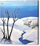 Snowy Scene Acrylic Print by Reb Frost