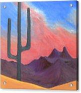 Southwest Scene Acrylic Print by J R Seymour