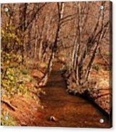 Spring At Red Rock Crossing Acrylic Print by Marilyn Smith