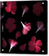 Spring Acrylic Print by Christian Slanec