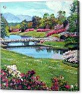 Spring Flower Park Acrylic Print by David Lloyd Glover