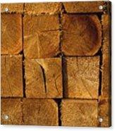 Stack Of Logs Acrylic Print by David Chapman