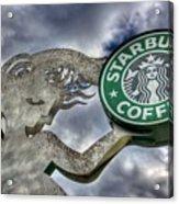 Starbucks Coffee Acrylic Print by Spencer McDonald