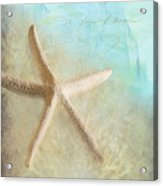 Starfish Acrylic Print by Betty LaRue