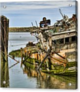 Still Afloat Acrylic Print by Heather Applegate