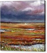 Storm Coming Acrylic Print by Peter R Davidson