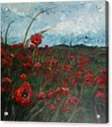 Stormy Poppies Acrylic Print by Nadine Rippelmeyer