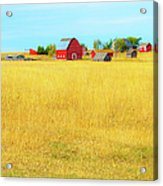 Storybook Farm Acrylic Print by Theresa Tahara