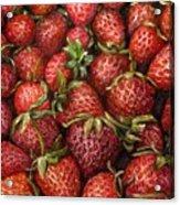 Strawberries -2 Contemporary Oil Painting Acrylic Print by Natalja Picugina