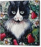 Strawberry Lover Cat Acrylic Print by Natalie Holland