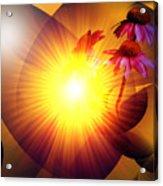 Summer Solstice II Acrylic Print by Patricia Motley