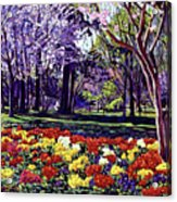 Sunday In The Park Acrylic Print by David Lloyd Glover